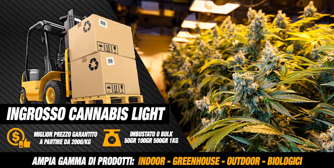 Ingrosso Cannabis Light