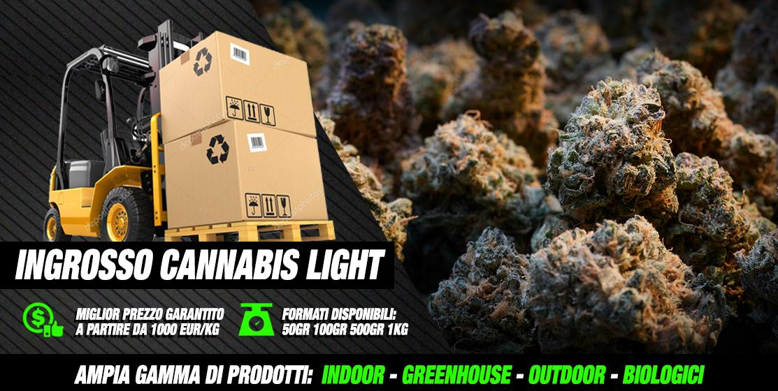 Ingrosso Cannabis Light